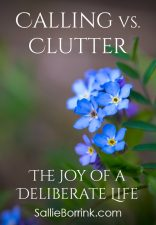 Calling versus Clutter – The Joy of a Deliberate Life