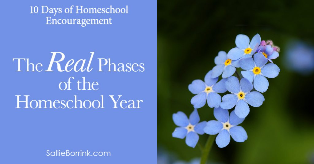 The Real Phases of the Homeschool Year 2