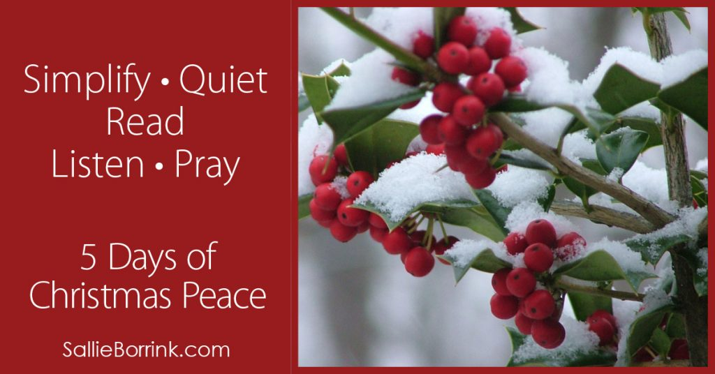 5 Days of Christmas Peace - Overview 2