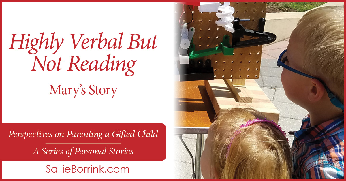 Highly Verbal But Not Reading in a Twice Exceptional Child - Mary's Story on SallieBorrink.com