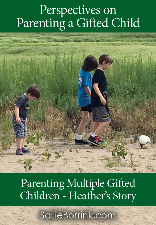 Parenting Multiple Gifted Children - Heather's Story