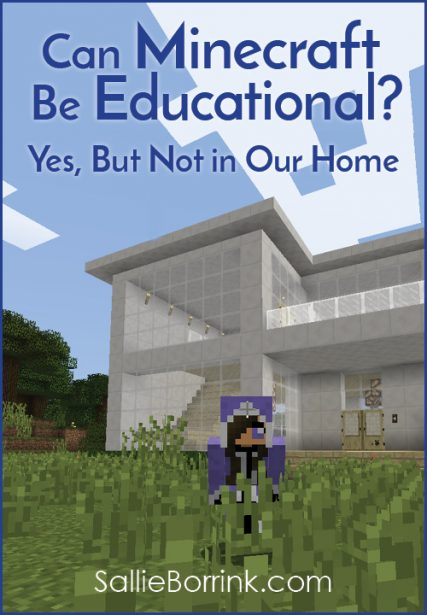 Can Minecraft Be Educational? Yes, But Not in Our Home