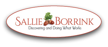Sallie Borrink - Discovering and Doing What Works