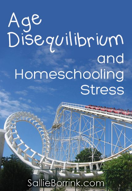 Age Disequilibrium and Homeschooling Stress