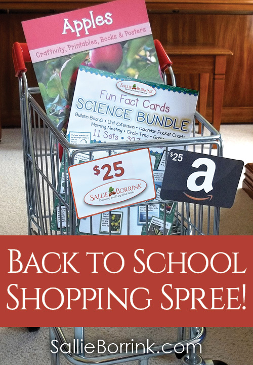Sallie Borrink Back to School Shopping Spree 2017