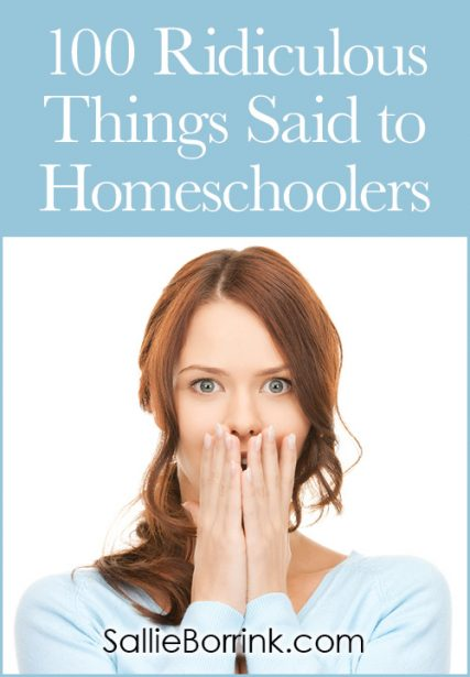 100 Ridiculous Things Said to Homeschoolers