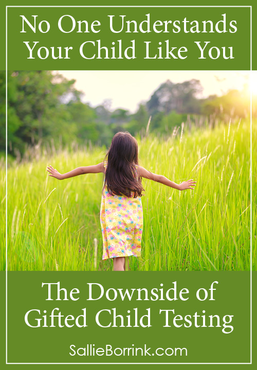 No One Understands Your Child Like You – The Downside of Gifted Child Testing