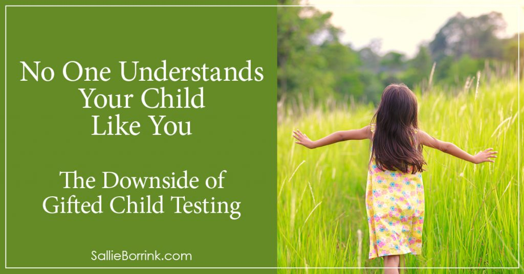 No One Understands Your Child Like You – The Downside of Gifted Child Testing 2