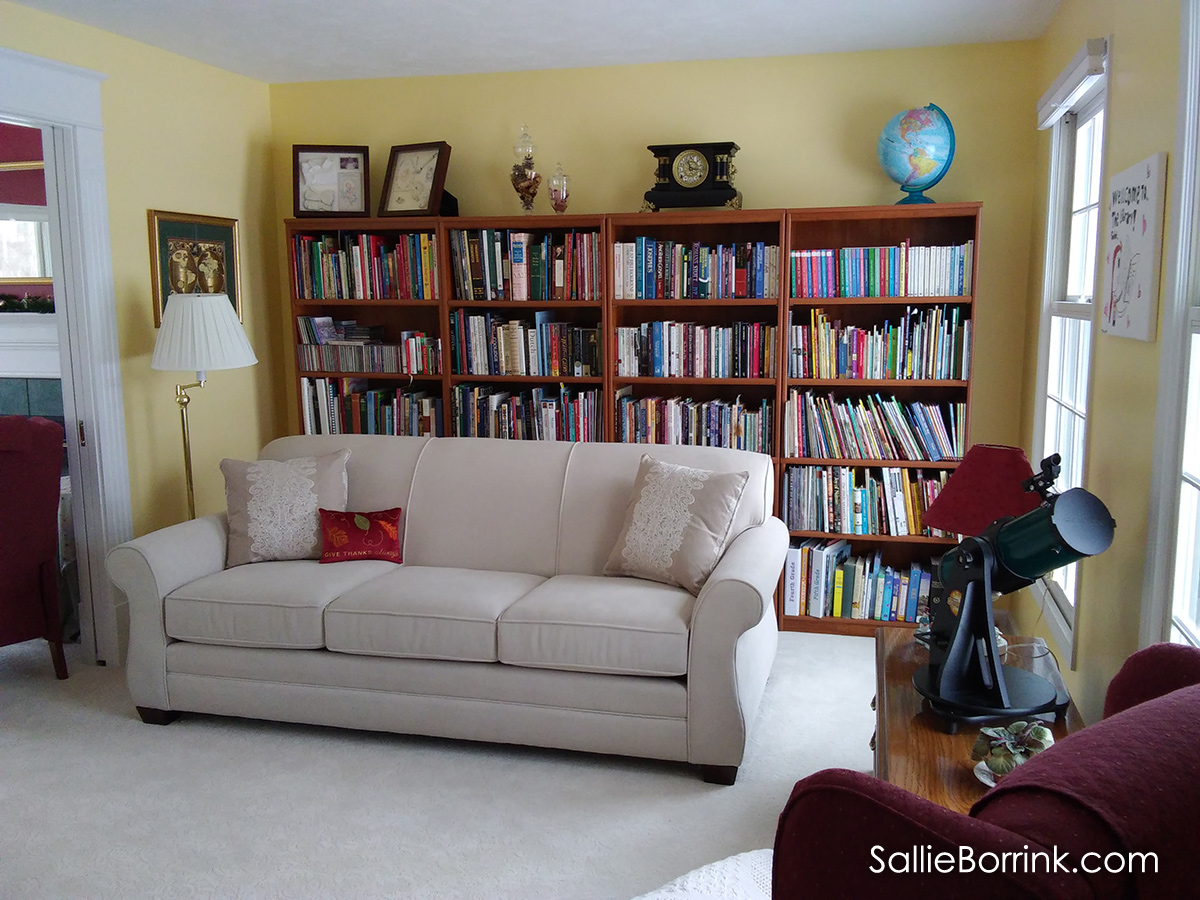Library remodel with bookcases and couch