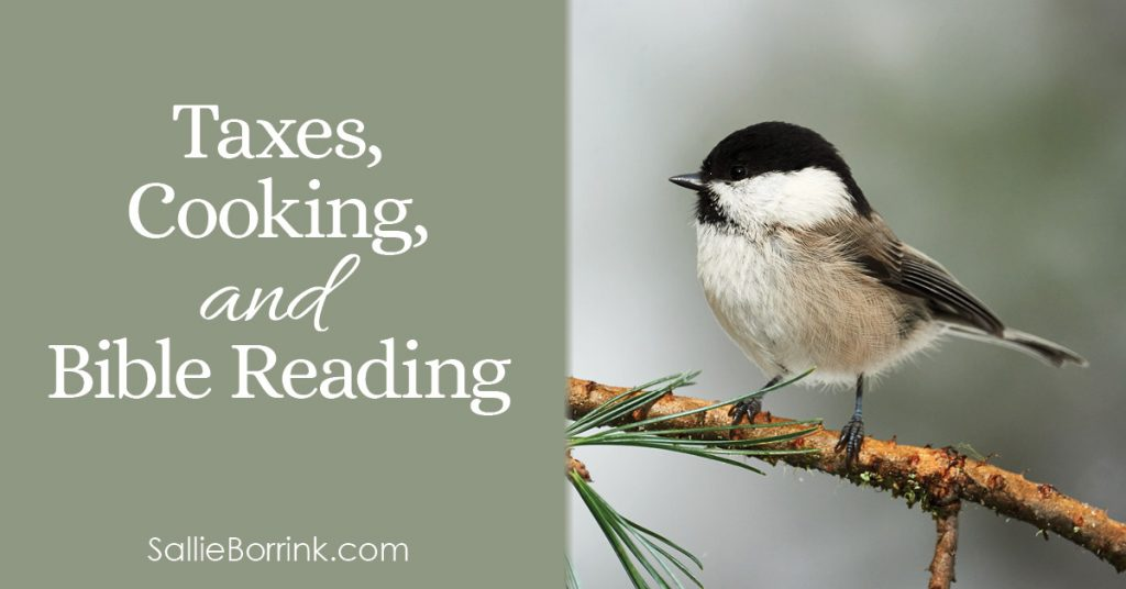 Taxes, Cooking, and Bible Reading 2