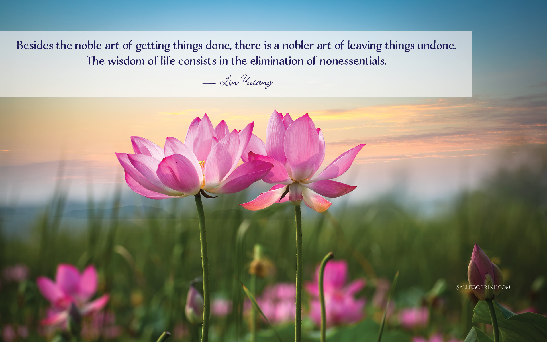 Besides the noble art of getting things done, there is a nobler art of leaving things undone. The wisdom of life consists in the elimination of nonessentials. — Lin Yutang