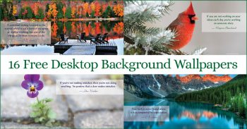 Free Desktop Backgrounds Wallpaper 9