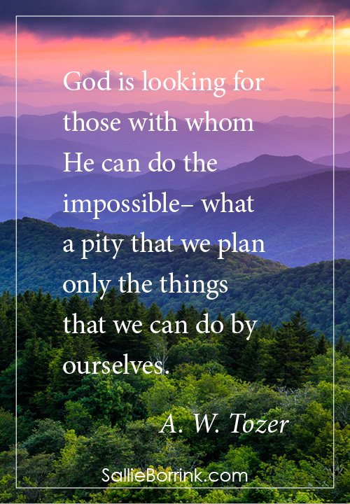 God is looking for those with whom He can do the impossible– what a pity that we plan only the things that we can do by ourselves. A. W. Tozer