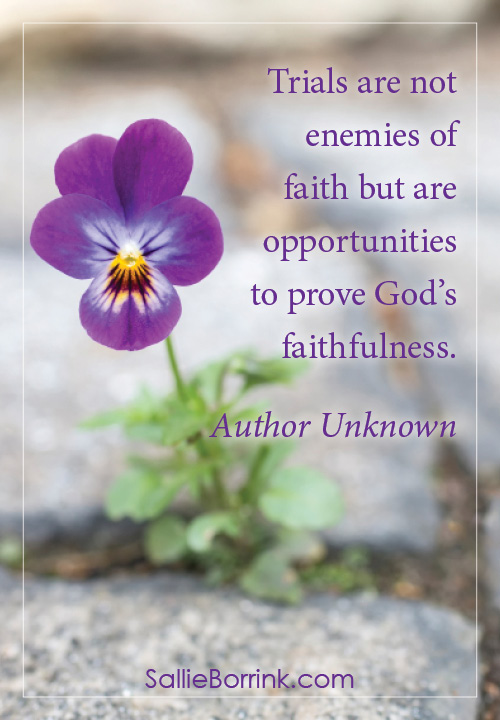 Trials are not enemies of faith but are opportunities to prove God's faithfulness.