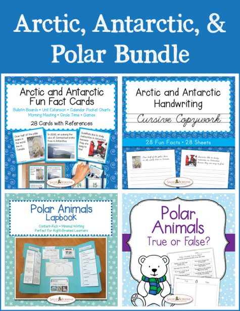 Arctic, Antarctic, and Polar Bundle - Cursive