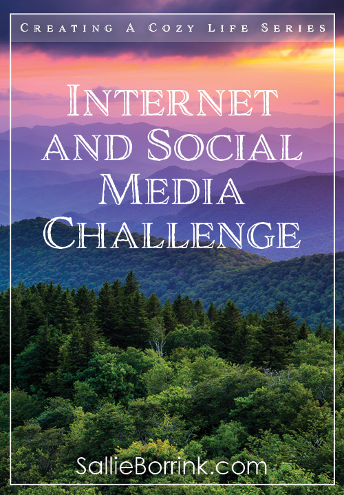 Internet and Social Media Challenge PIn