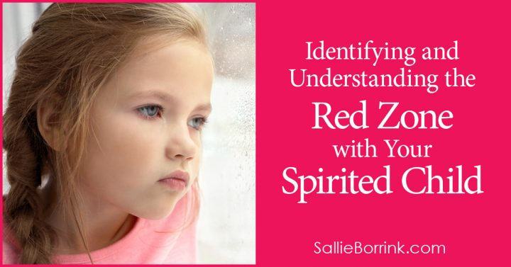 Identifying and Understanding the Red Zone with Your Spirited Child 2
