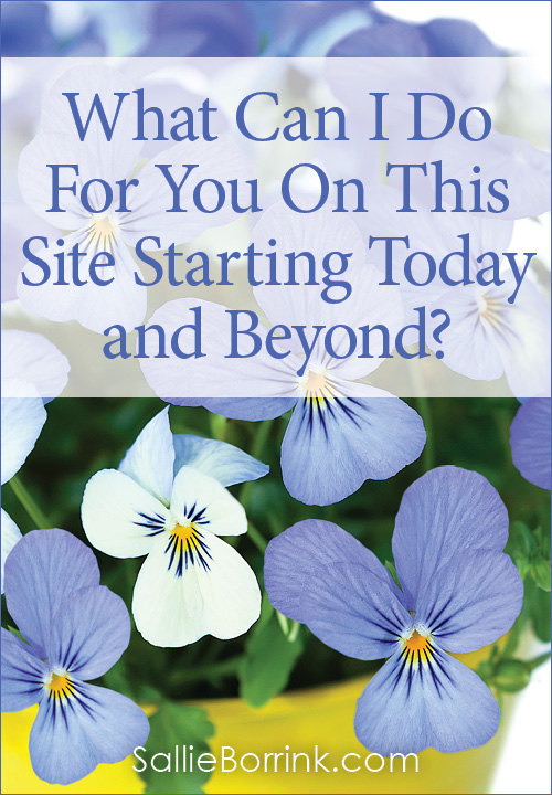 What Can I Do For You On This Site Starting Today and Beyond