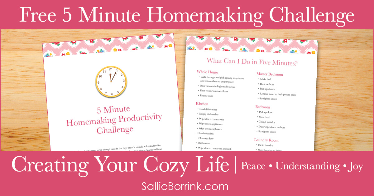 5 Minute Homemaking Productivity Challenge - Creating Your Cozy Life Planner 2