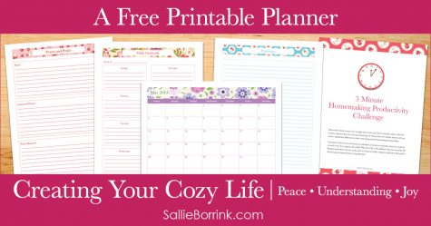Creating a Cozy Life Planner - Series Pin 2