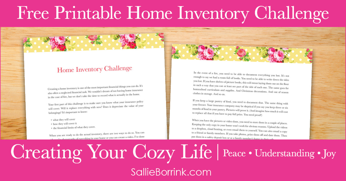 Free Printable Home Inventory Challenge - Creating Your Cozy Life Planner 2