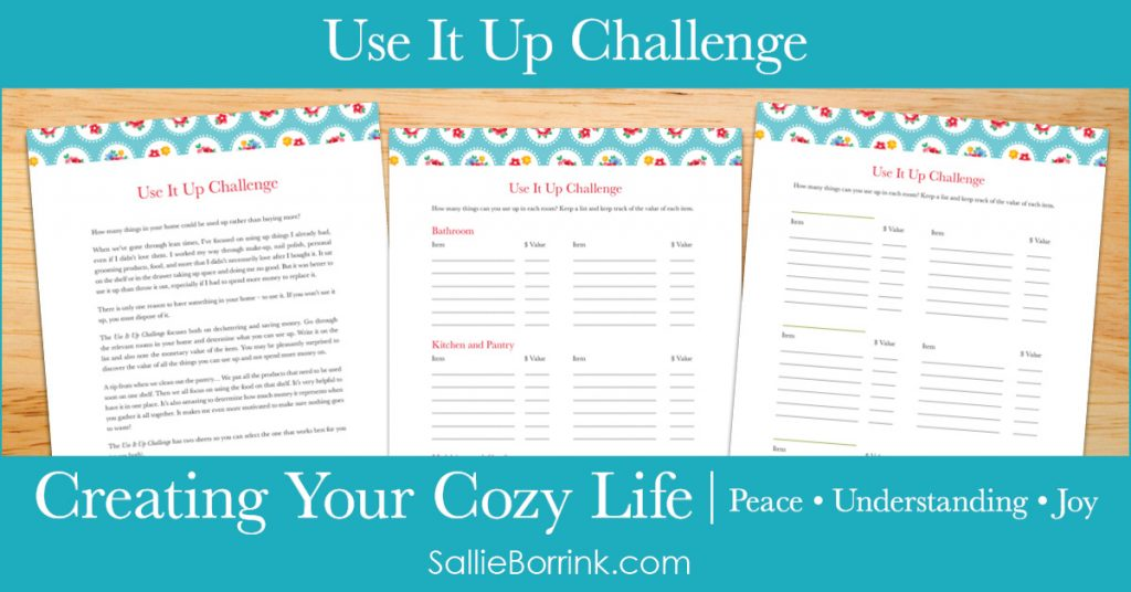 Use it Up Challenge - Creating Your Cozy Life Planner 2