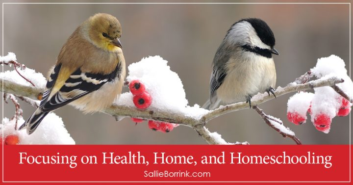 Focusing on Health, Home, and Homeschooling 2