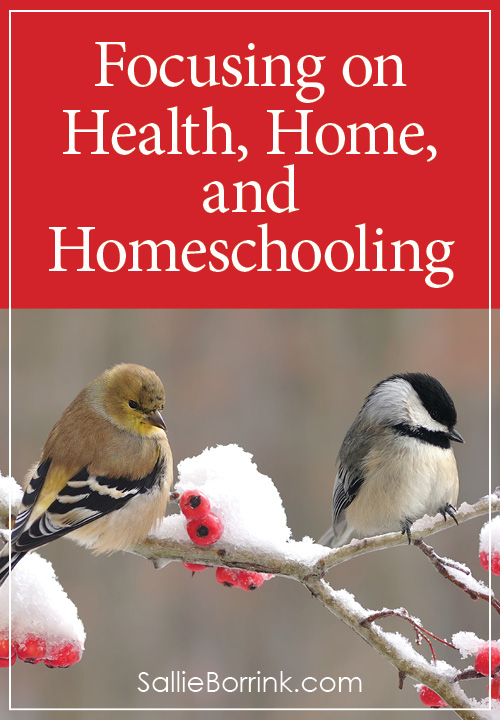 Focusing on Health, Home, and Homeschooling