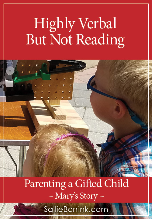 Highly Verbal But Not Reading In a Twice-Exceptional Child - Mary's Story