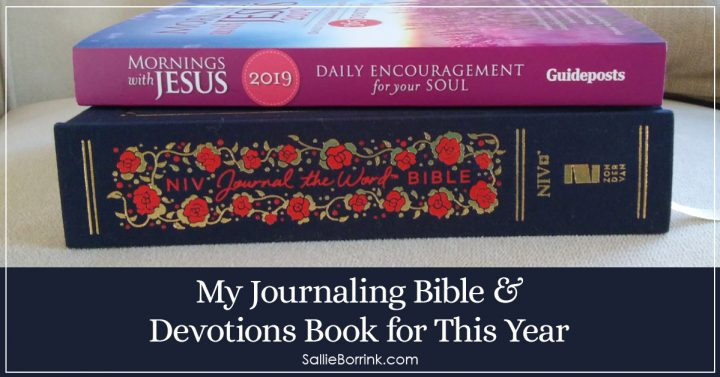 My Journaling Bible & Devotions Book for This Year 2