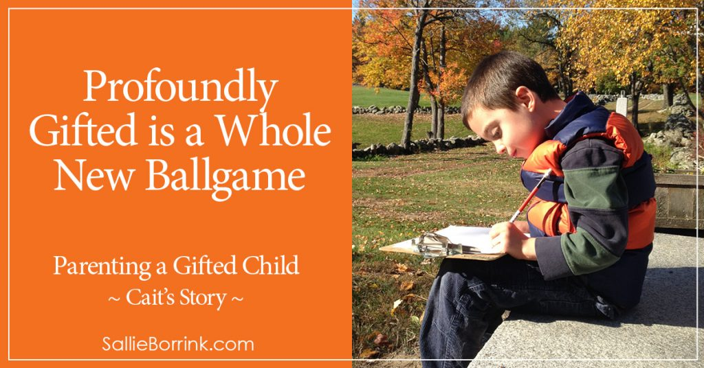 Profoundly Gifted is a Whole New Ballgame - Cait's Story 2
