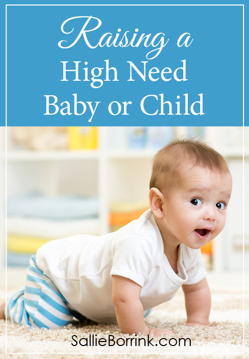 Raising a High Need Baby or Child