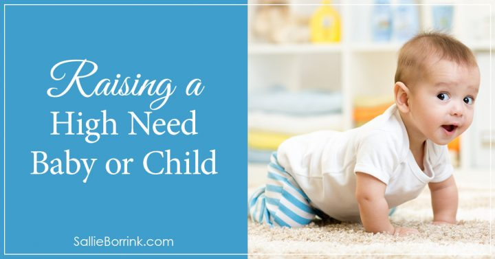Raising a High Need Baby or Child 2