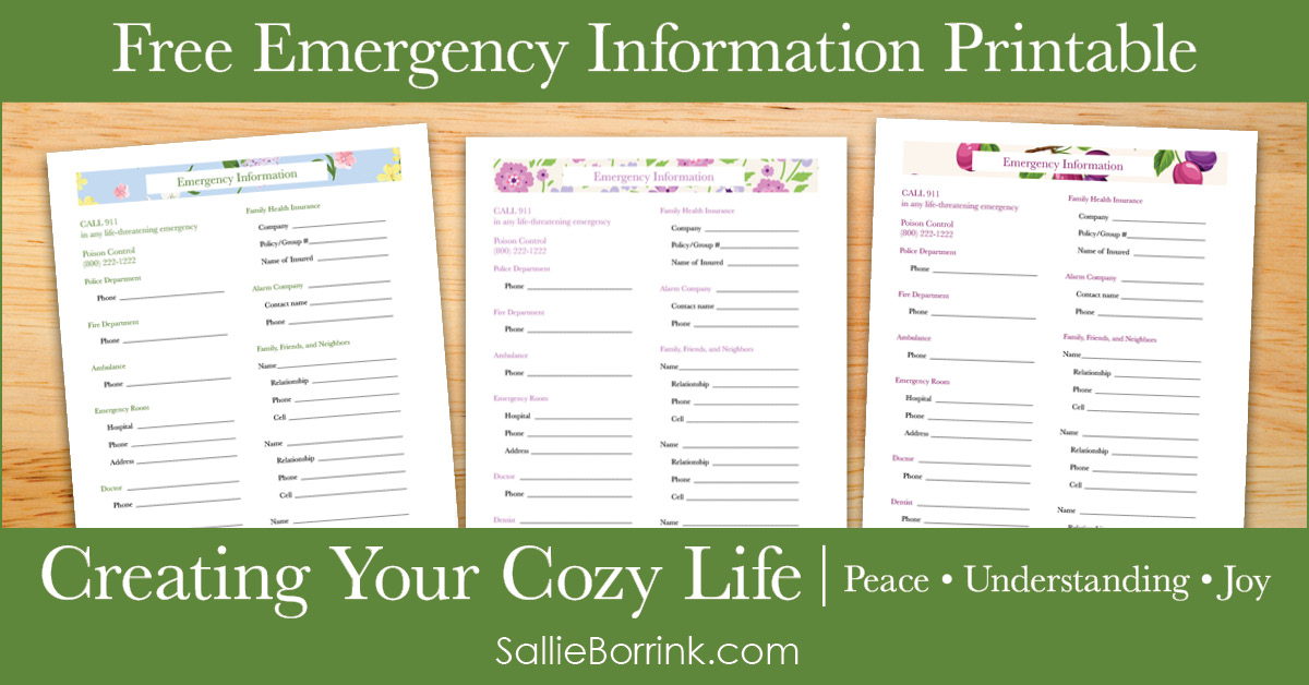 Free Emergency Information Printable - Creating Your Cozy Life Planner 2