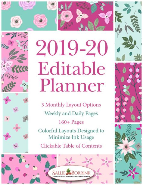 2019-20 Pink and Teal Flowers Planner