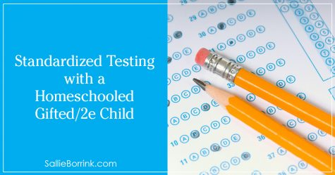 Standardized Testing with a Homeschooled Gifted:2e Child 2