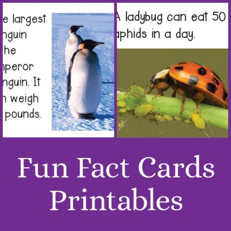 Fun Fact Cards