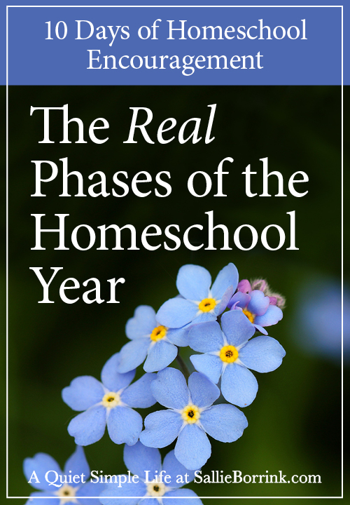 The Real Phases of the Homeschool Year