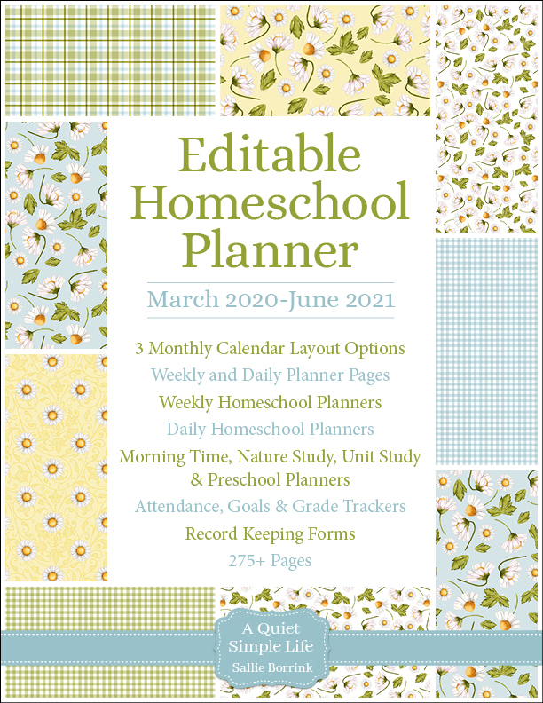 Daisies & Gingham Editable Homeschool Planner