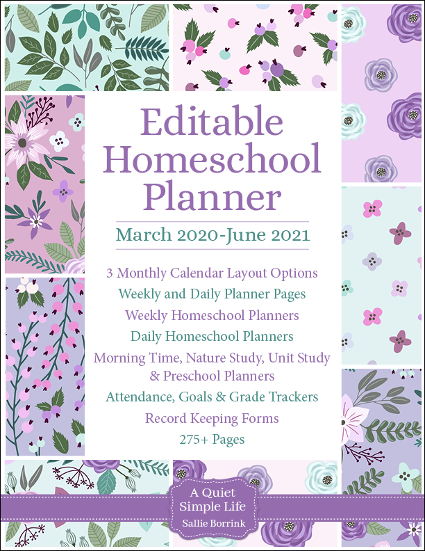 Lavender & Teal Editable Homeschool Planner
