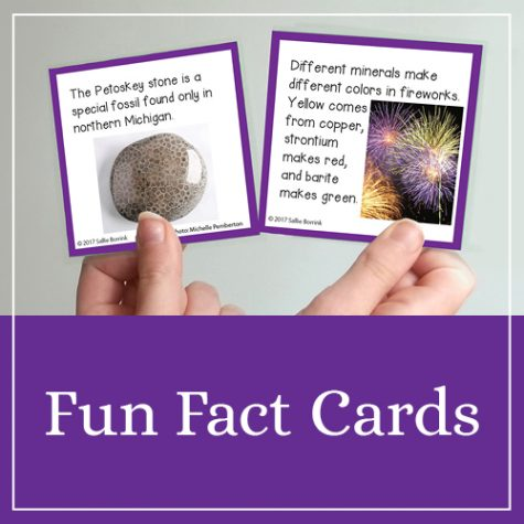Fun Fact Cards