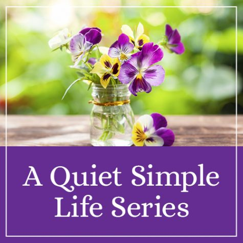 A Quiet Simple Life Series
