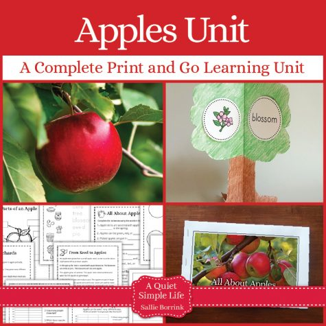 Apples Unit with Craftivity - A Complete Print and Go Learning Unit