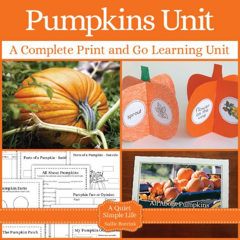 Pumpkin Unit with Craftivity - A Complete Print and Go Unit