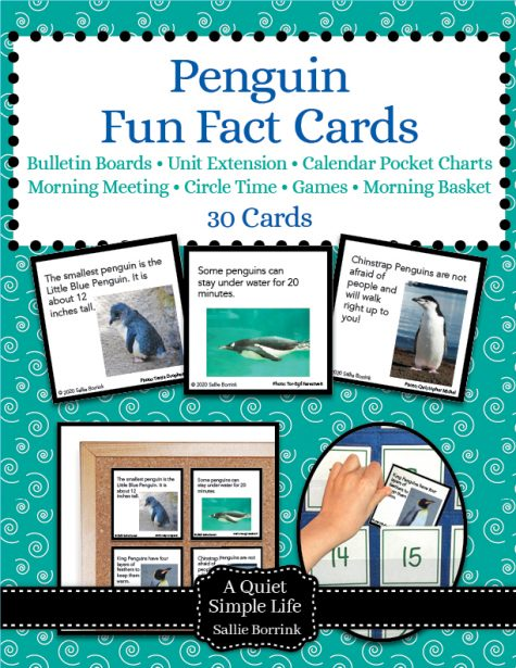 Penguin Fun Fact Cards