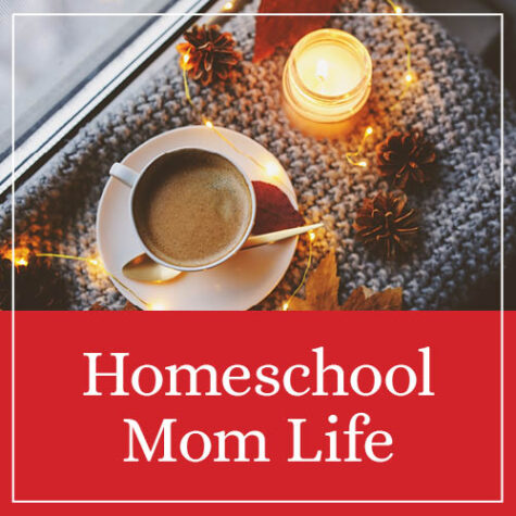 In My Shop: For The Homeschool Mom