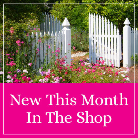 New This Month In The Shop