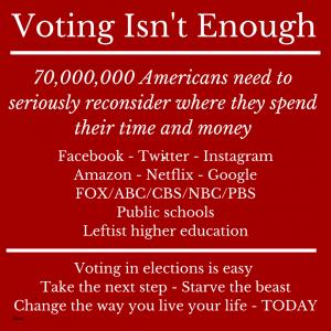 Voting Isn't Enough